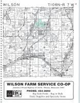 Wilson T106N-R7W, Winona County 1996